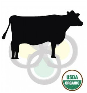 Organic Beef Cattle Feed